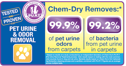 Pet Urine & Odor Removal By Chem-Dry Removes 99.9% of Pet Urine Odor and 99.2% of Pet Urine Bacteria